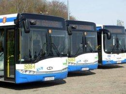 zkm-autobus