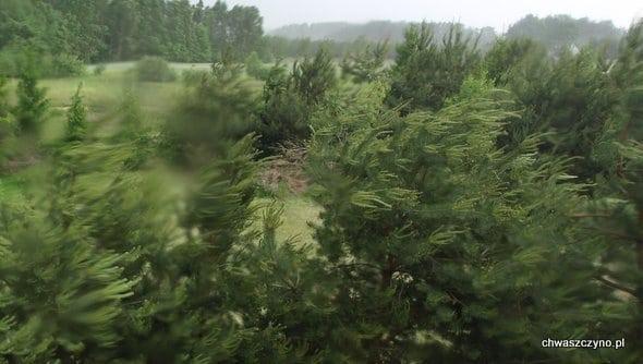 silny-wiatr-chwaszczyno