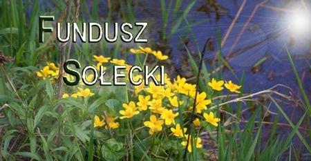 f solecki