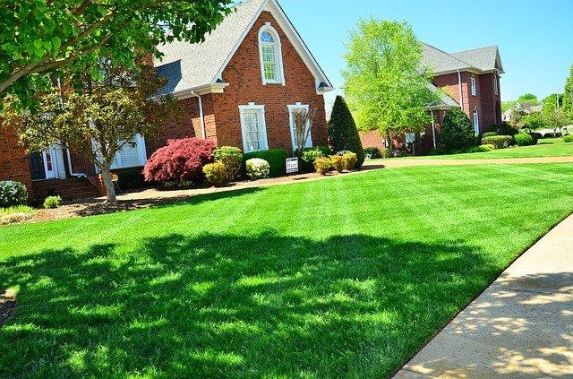lawn care 643561 640