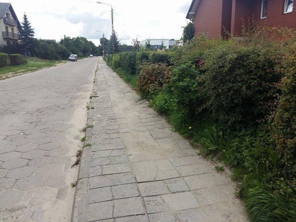 upiekszanie centrum chwaszczyna i mickiewicza 8